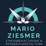 MARIO ZIESMER Logo
